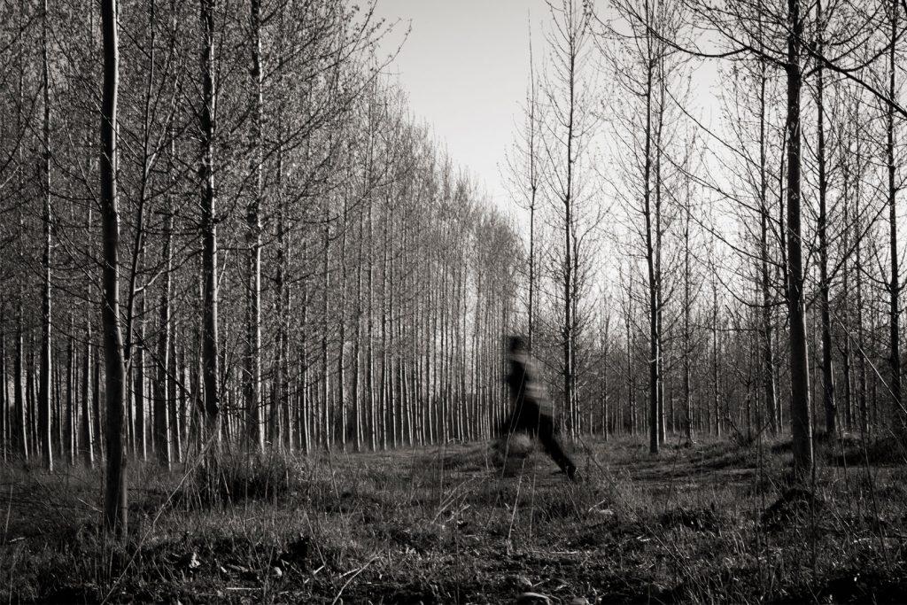 Miscelania-run-away